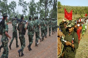 22 percent of decrease in Maoist activities, Committed to end it Government