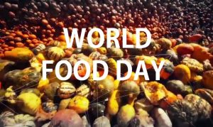 world-food-day-2016-biofortified-pearl-millet-varieties-to-reduce-iron-zinc-deficiency