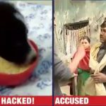 Animal Brutality: Delhi resident chopped a 2-month old puppy's paws with blade